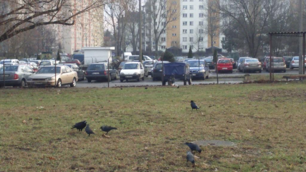A po Zaporożcu nie ma już śladu